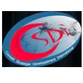 CSDI2