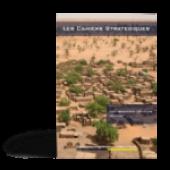 Les nouveaux défis en Afrique